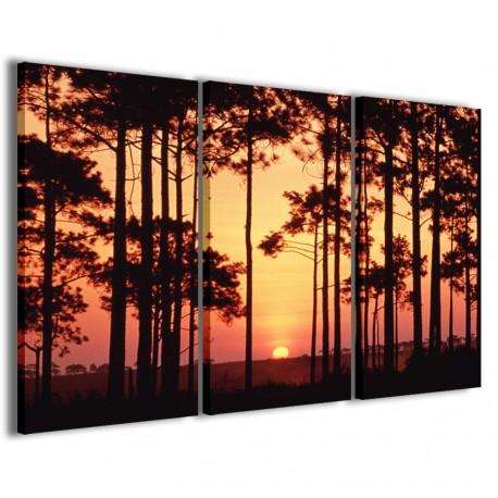 Sunset Through The Trees 120x90 - 1