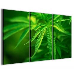 Cannabis Foliage 120x90