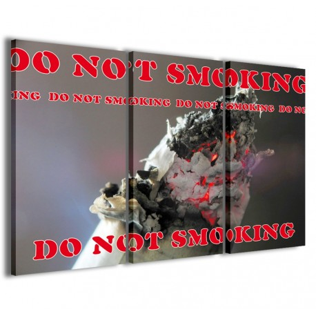 Do Not Smoking 120x90