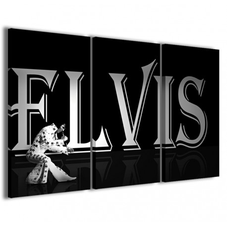 Elvis Live 120x90