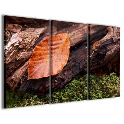 Foliage Composition 120x90