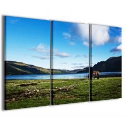 Foto Cavallo sul Lago 120x90