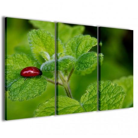 Ladybug 120x90