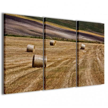 Foto Puglia 1 120x90