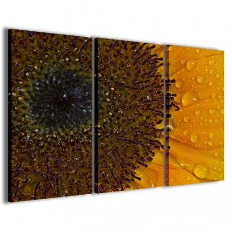 Foto Sunflower I 120x90