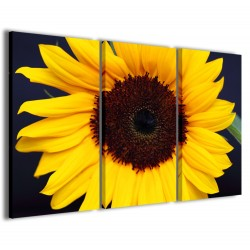 Foto Sunflower III 120x90