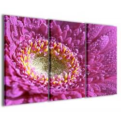 Foto The Beatiful Flowers 120x90