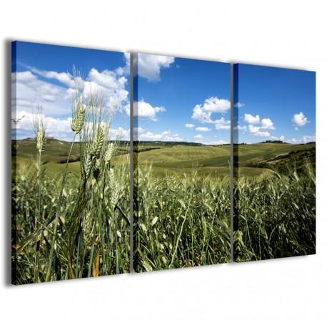 Foto Toscana III 120x90 - 1