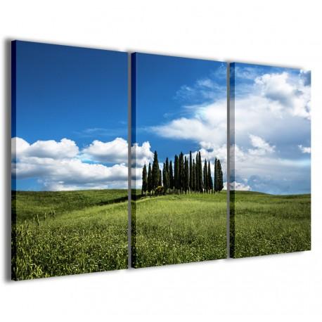 Foto Toscana IX 120x90