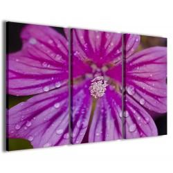 Foto Wildflower 120x90