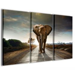 Big Elephant 120x90