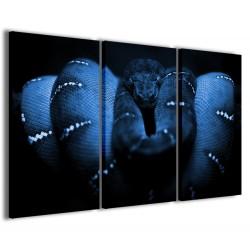 Blu Snake 120x90