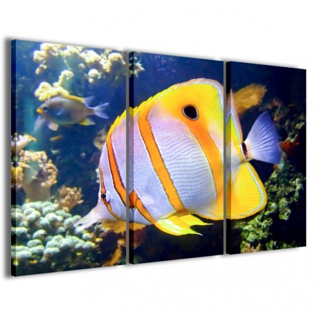 Butterfly Fish 120x90