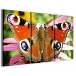 Butterfly II 120x90