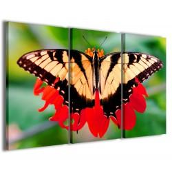 Butterfly 120x90
