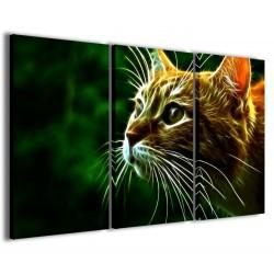 Cat IV 120x90