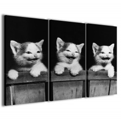 Cat Smiling 120x90