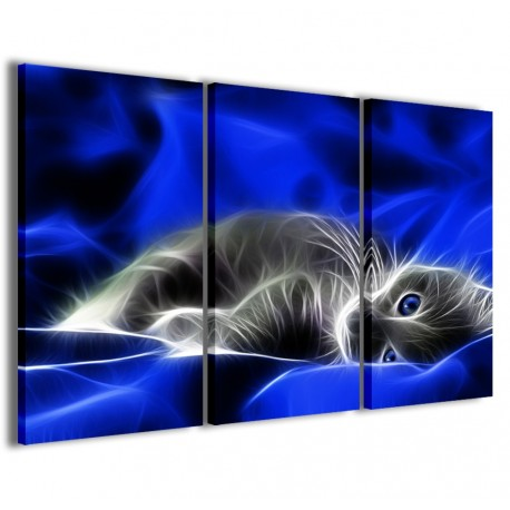 Cat V 120x90