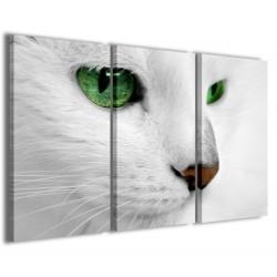 Cat 120x90