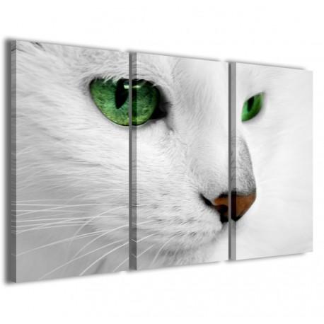 Cat 120x90 - 1
