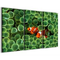 Clownfish Anemone 120x90