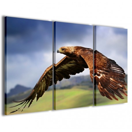 Eagle II 120x90
