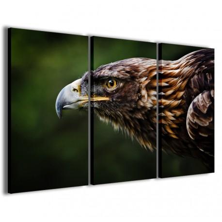 Eagle III 120x90