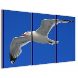 Gull 120x90