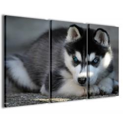 Husky 120x90