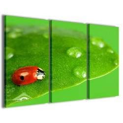 Ladybug in Green 120x90