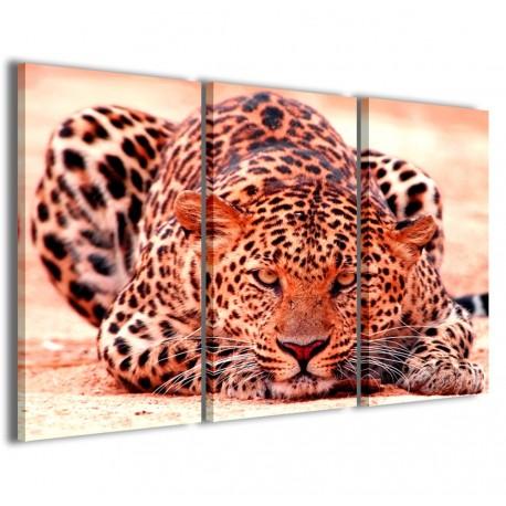 Leopard 120x90