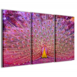 Peacock Illsuion Color 120x90
