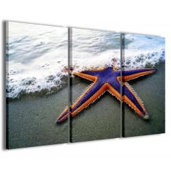 Starfish II 120x90