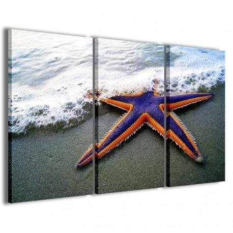 Starfish II 120x90 - 1