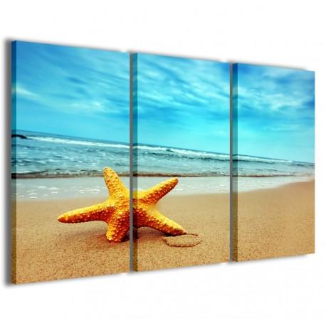 Starfish 120x90
