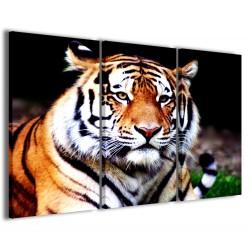 Tigre I 120x90