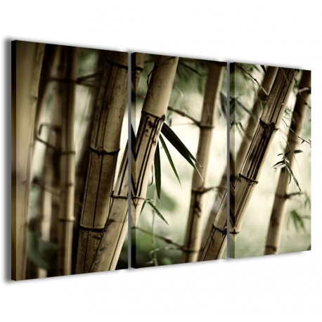 Oriental Bamboo 120x90 - 1