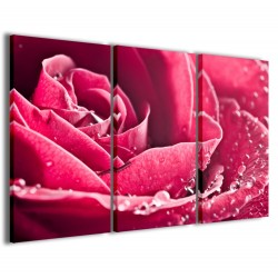 Beatiful Rose 120x90
