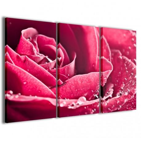 Beatiful Rose 120x90