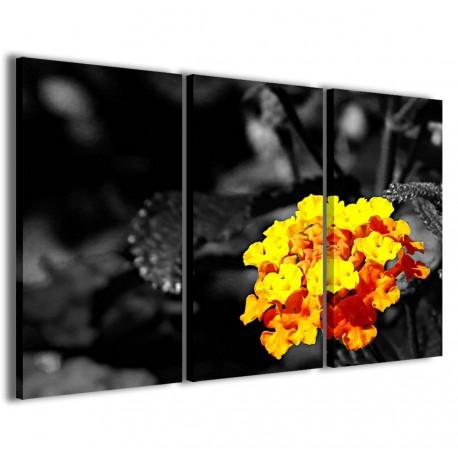 Black Color Flower 120x90 - 1
