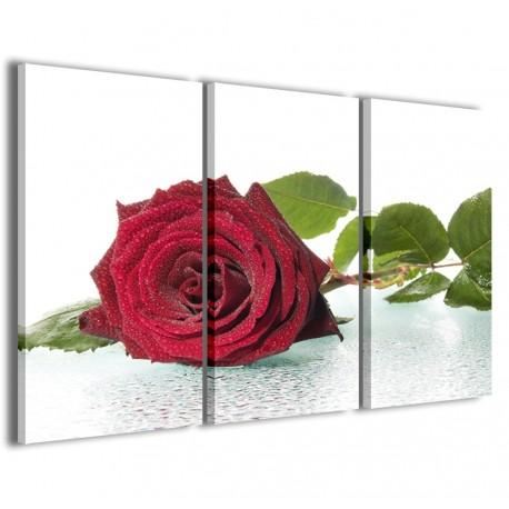 Blown Rose 120x90