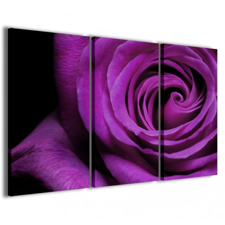 Blue Rose 120x90