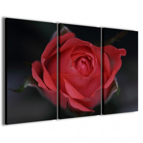 Bouche Rose 120x90 - 1