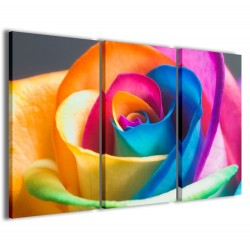 Color Rose 120x90