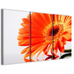 Fantastic Bloom 120x90
