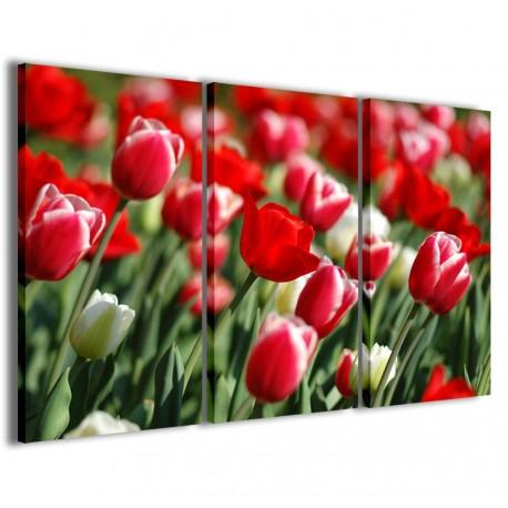 Field of Tulips 120x90