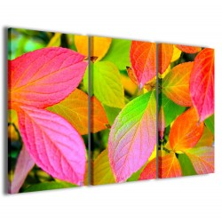 Foliage Color 120x90