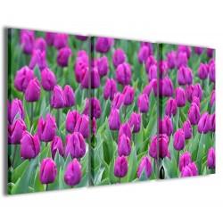 Holland Tulips 120x90