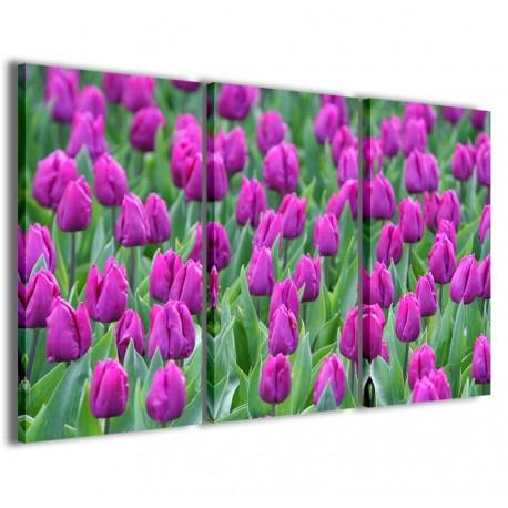 Holland Tulips 120x90 - 1