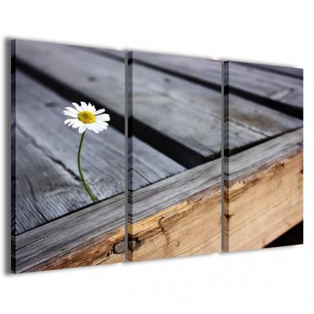 Lonely Daisy 120x90 - 1